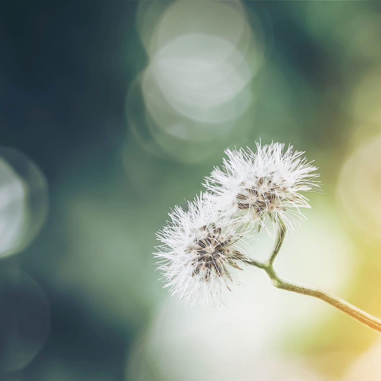 Valon Kosketus -hoito | Hoitohuone Valokeho